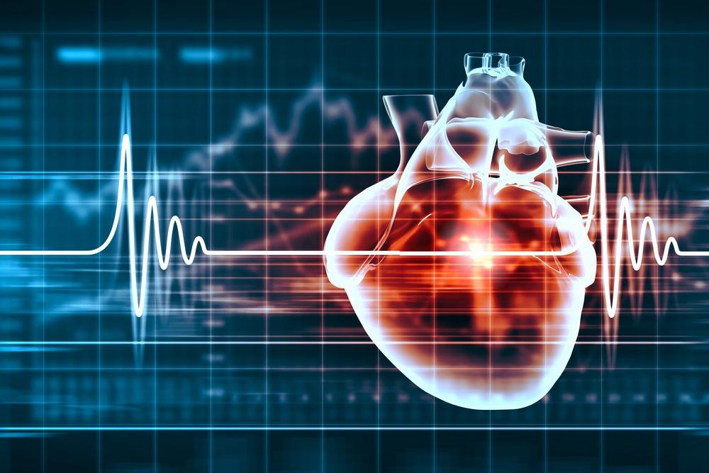 Virtual image of human heart with cardiogram.jpeg