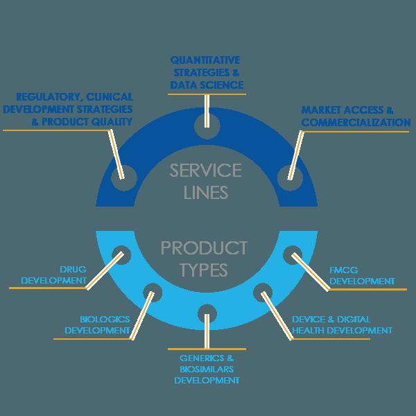 Strategic_consulting_org_infographic__v3