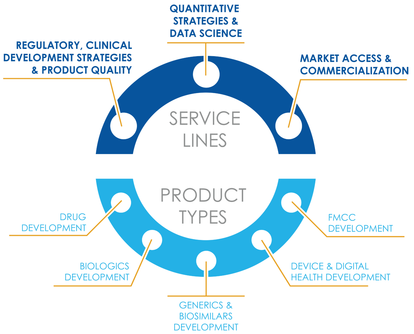 Strategic_consulting_org_infographic_v2